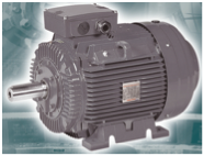 Standard Efficiency Power Series Motors